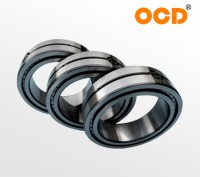 High Quality NJ...V/SL19 series full complement cylindrical roller bearings
